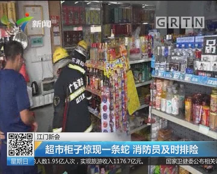 江门新会:超市柜子惊现一条蛇 消防员及时排险