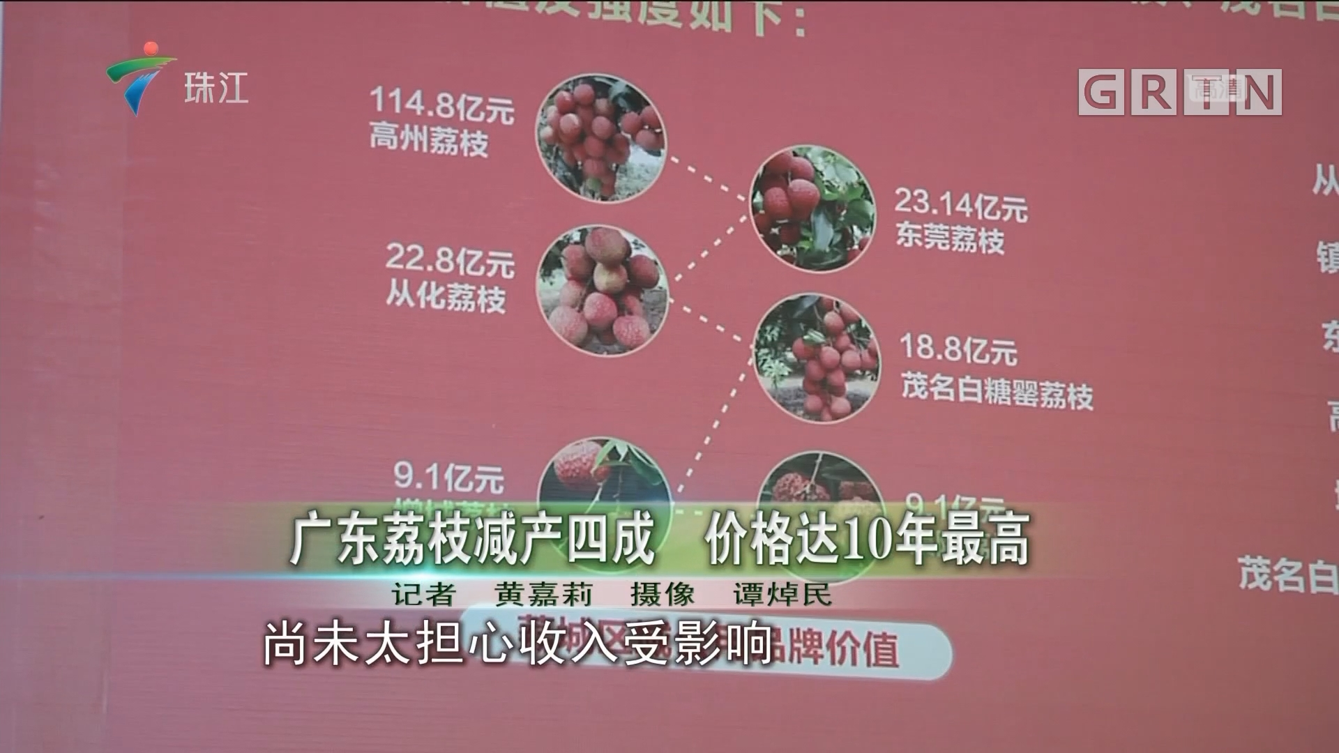 广东荔枝减产四成 价格达10年最高