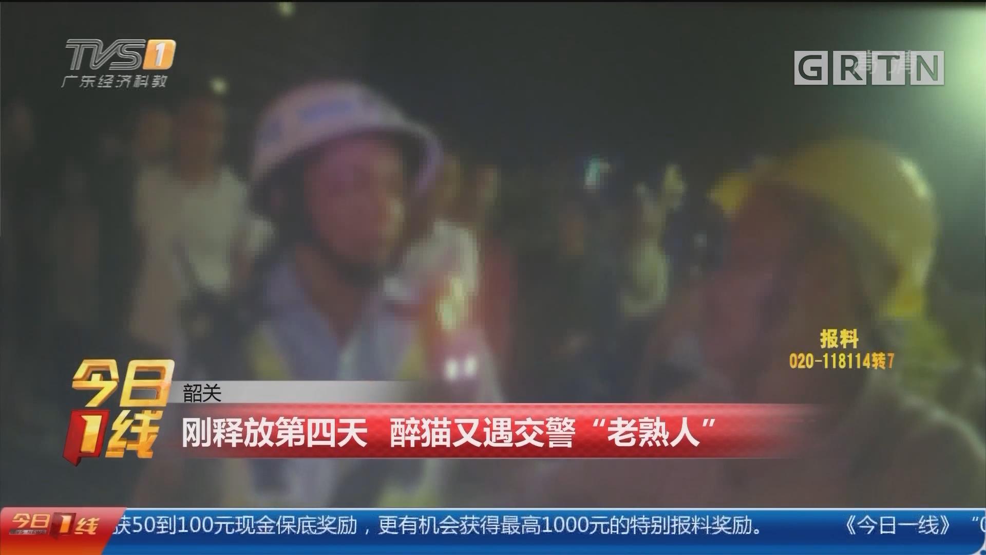 """韶关:刚释放第四天 醉猫又遇交警""""老熟人"""""""