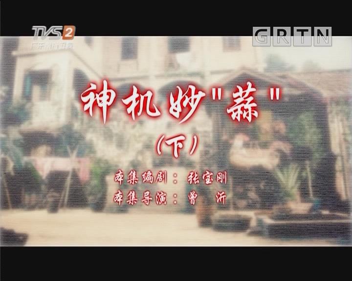 """[2019-05-26]七十二家房客:神机妙""""蒜""""(下)"""