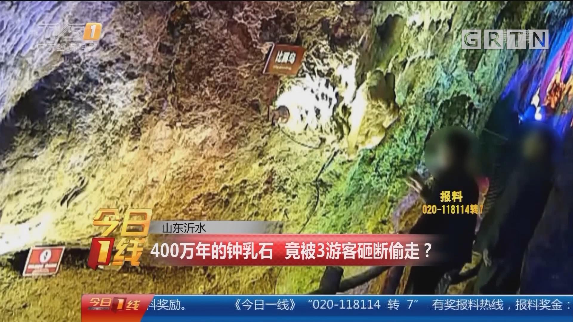 山东沂水:400万年的钟乳石 竟被3游客砸断偷走?