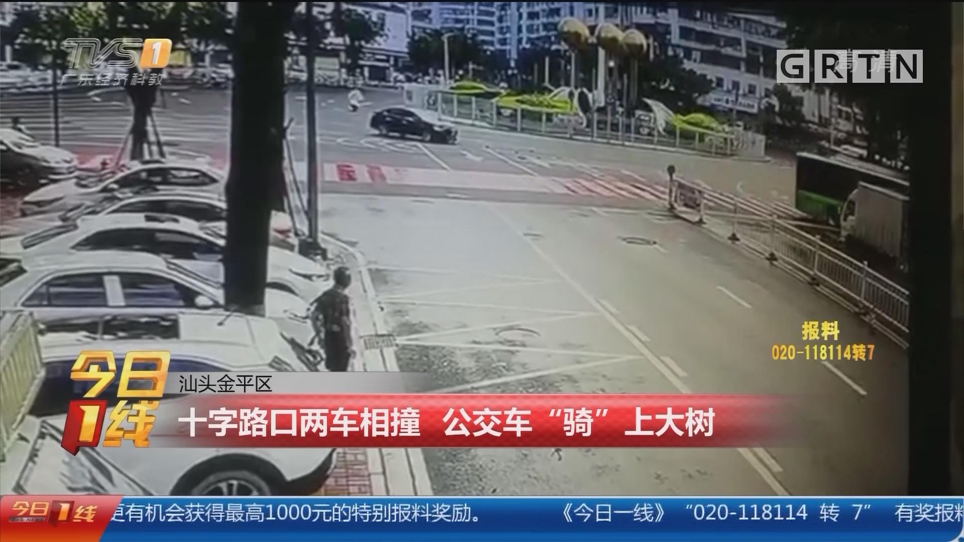 """汕头金平区:十字路口两车相撞 公交车""""骑""""上大树"""
