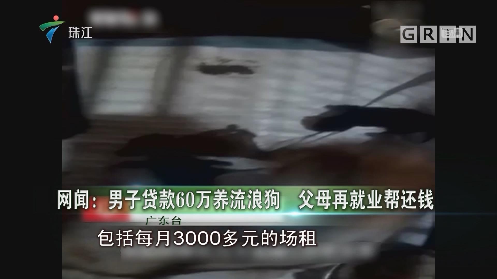 网闻:男子贷款60万养流浪狗 父母再就业帮还钱