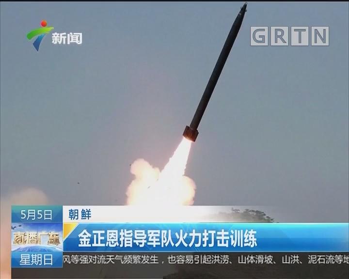 朝鲜:金正恩指导军队火力打击训练