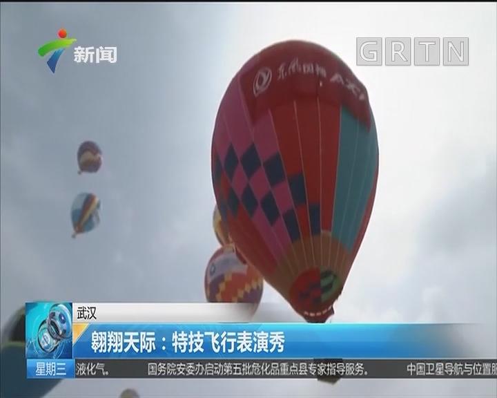 武汉 翱翔天际:特技飞行表演秀