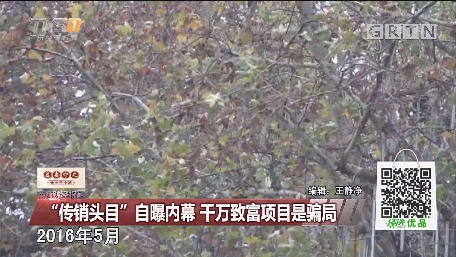 """""""传销头目""""自曝内幕 千万致富项目是骗局"""