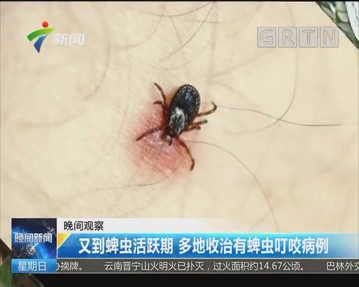 又到蜱虫活跃期 多地收治有蜱虫叮咬病例