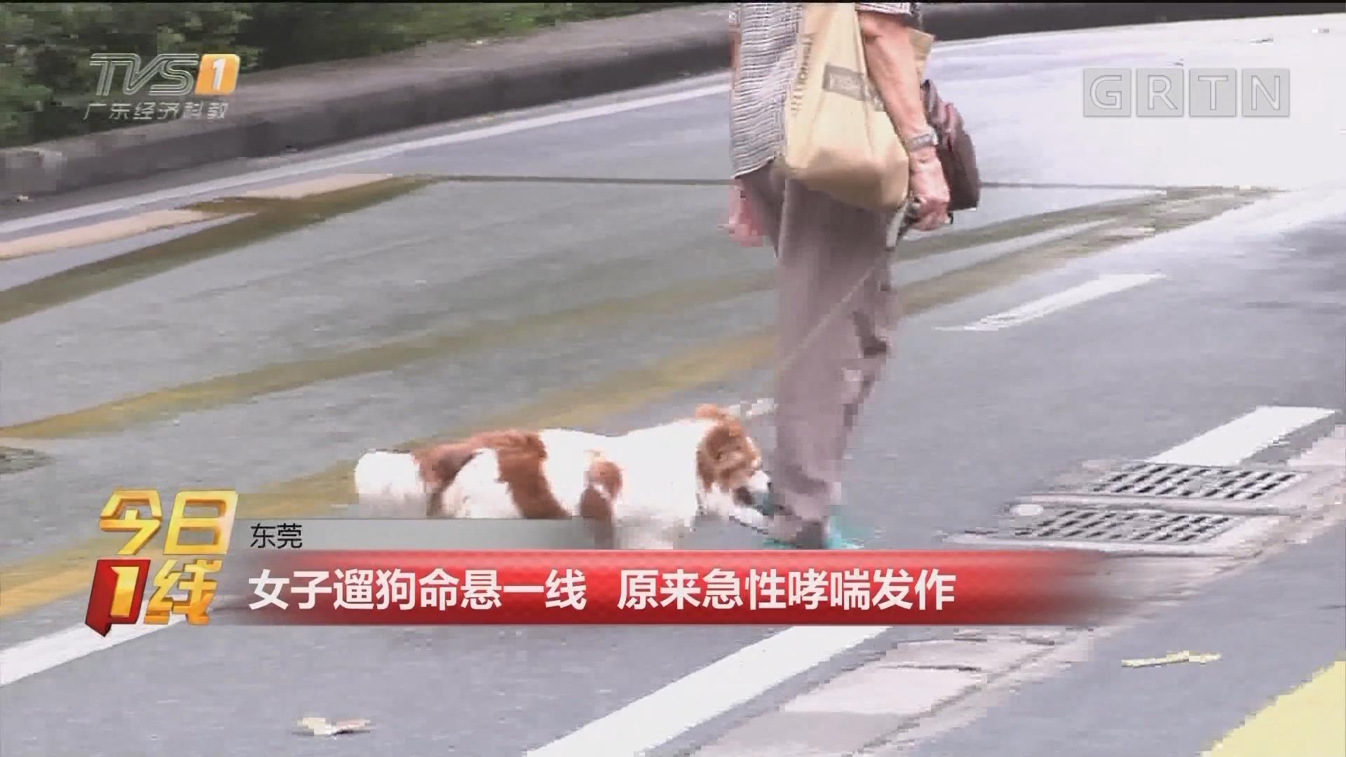 东莞:女子遛狗命悬一线 原来急性哮喘发作