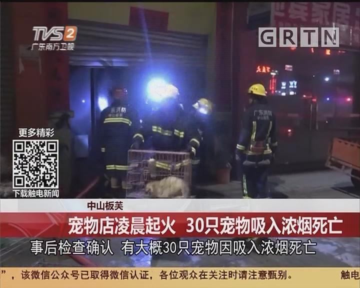中山板芙:宠物店凌晨起火 30只宠物吸入浓烟死亡