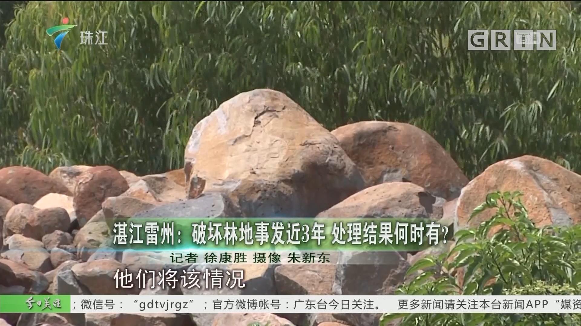 湛江雷州:破坏林地事发近3年 处理结果何时有?
