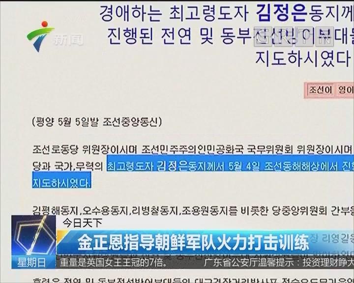 金正恩指导朝鲜军队火力打击训练