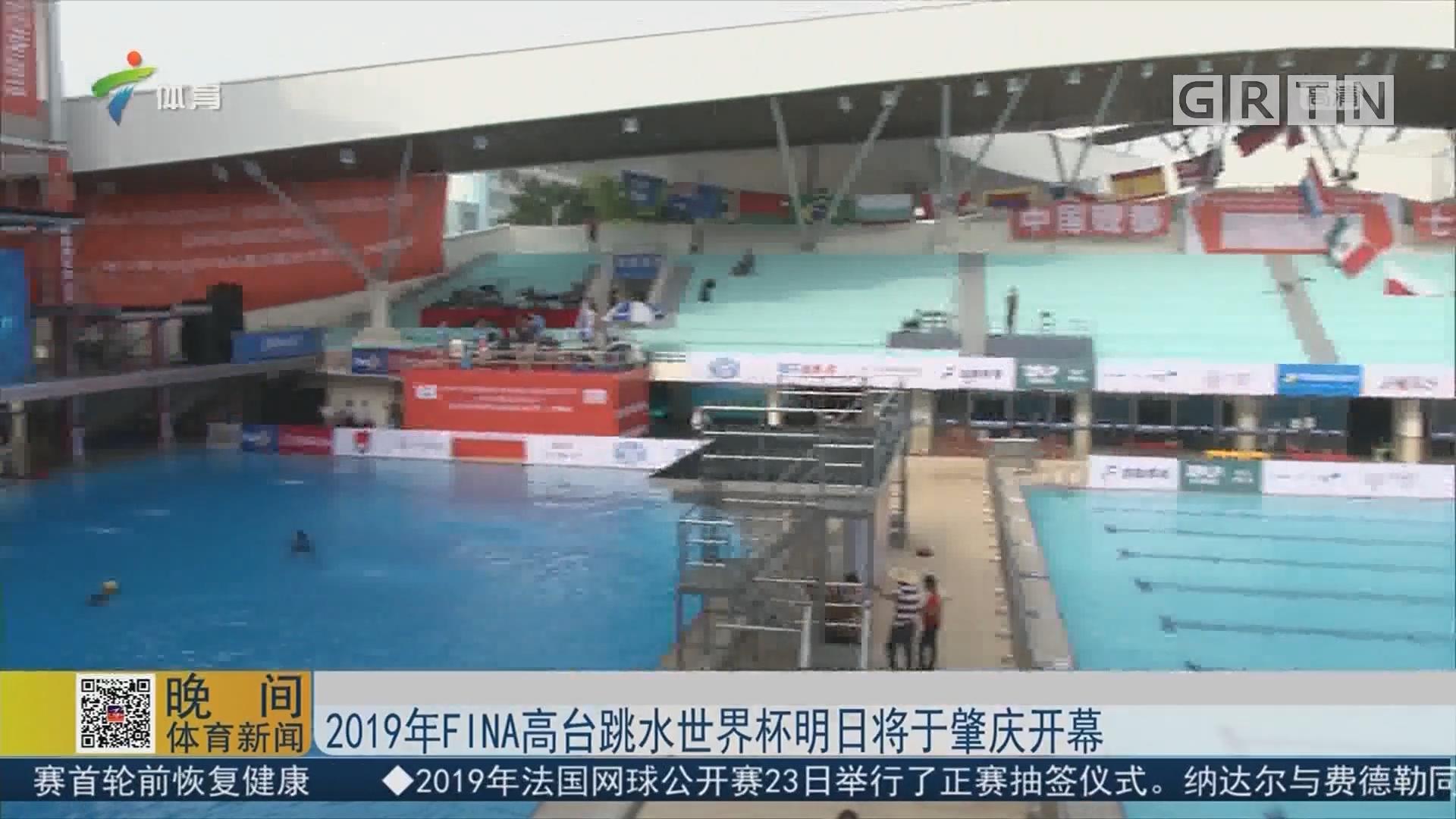 2019年FINA高台跳水世界杯明日将于肇庆开幕