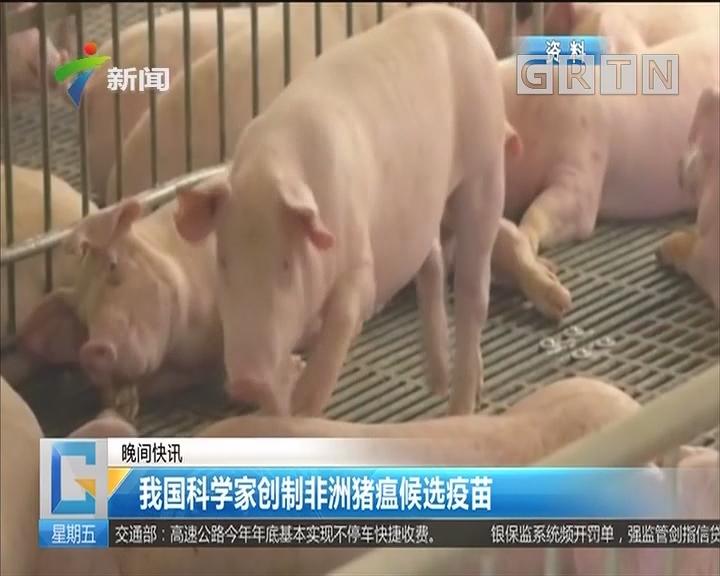 我国科学家创制非洲猪瘟候选疫苗