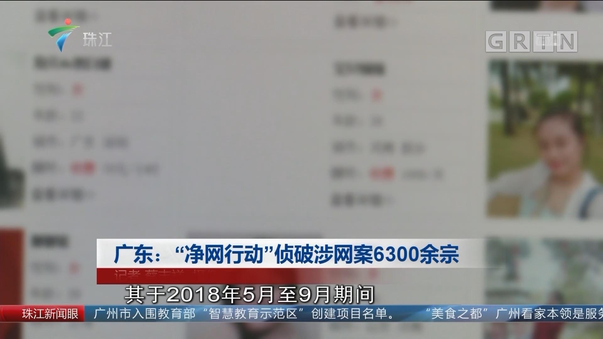 """广东:""""净网行动""""侦破涉网案6300余宗"""