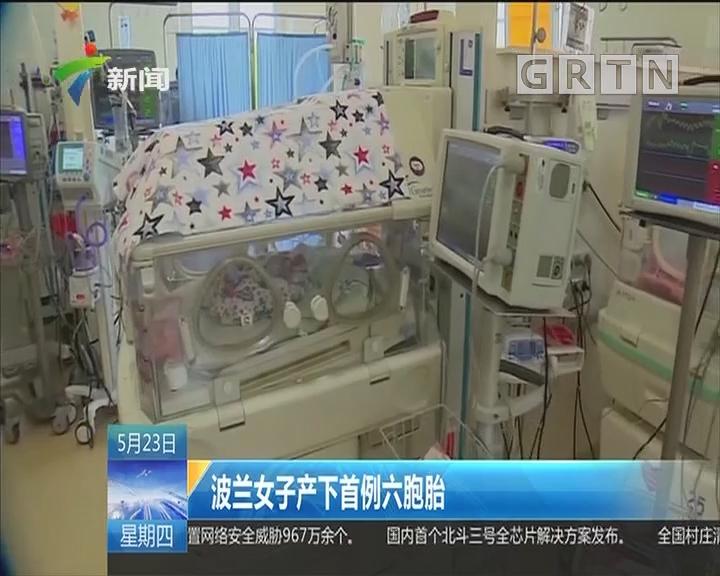 波兰女子产下首例六胞胎