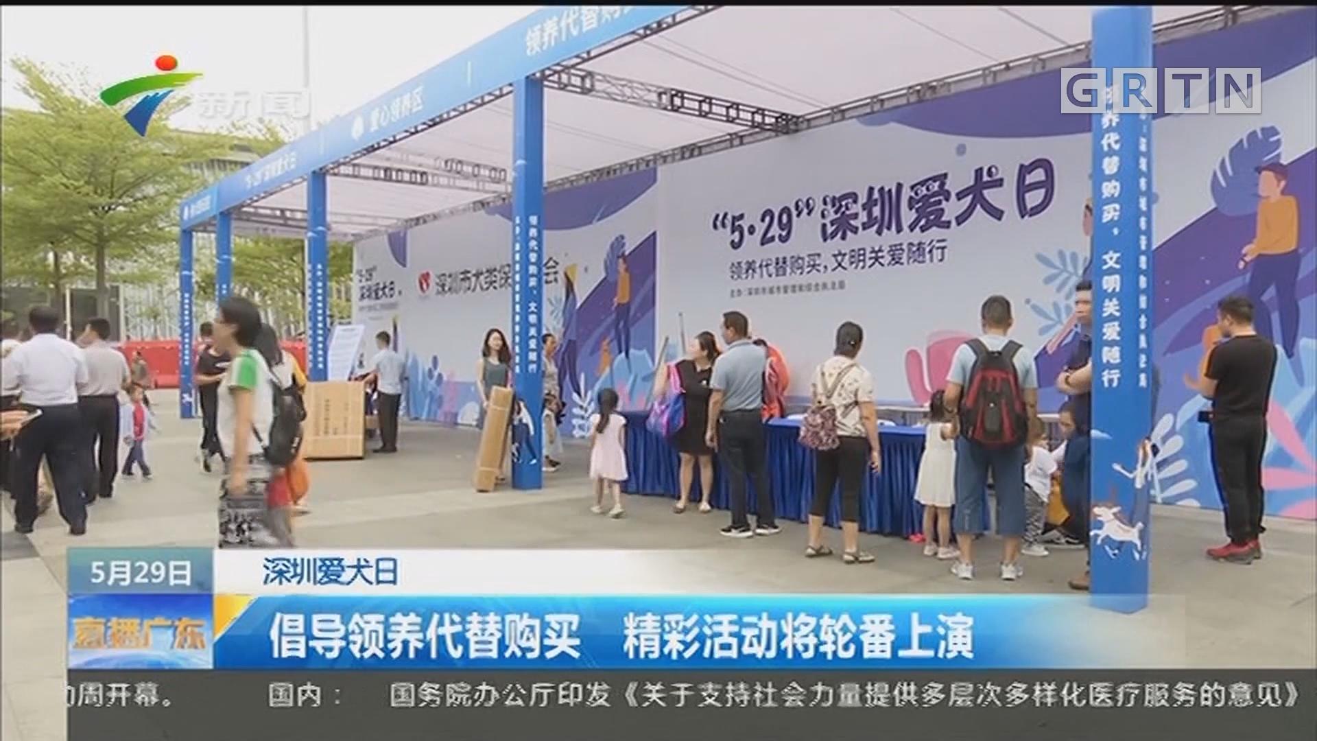 深圳爱犬日:倡导领养代替购买 精彩活动将轮番上演