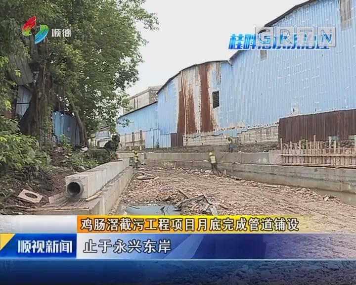 鸡肠滘截污工程项目月底完成管道铺设