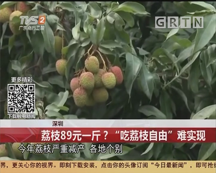 """深圳:荔枝89元一斤?""""吃荔枝自由""""难实现"""