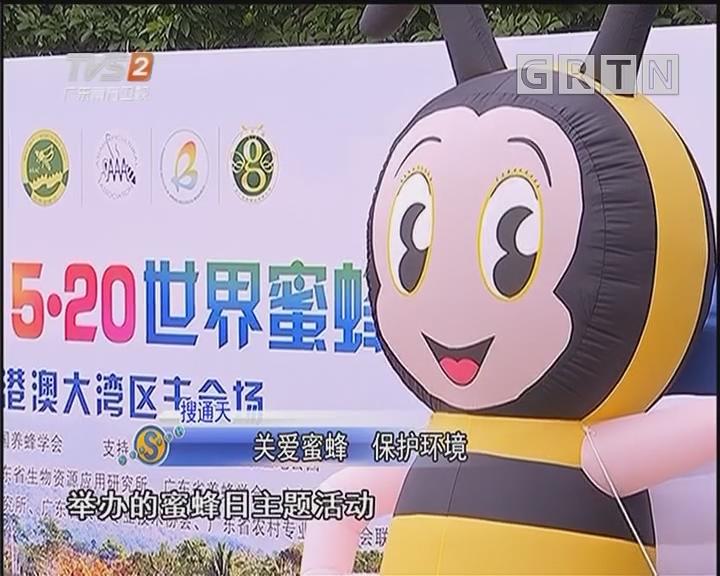 关爱蜜蜂 保护环境