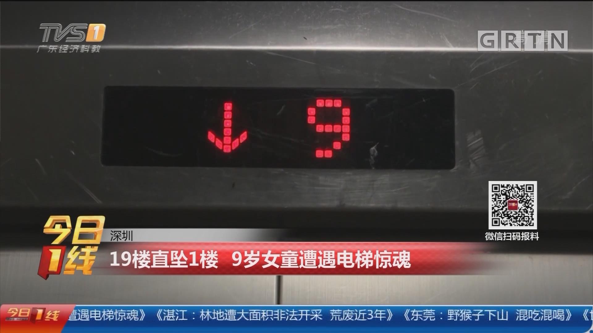 深圳:19楼直坠1楼 9岁女童遭遇电梯惊魂