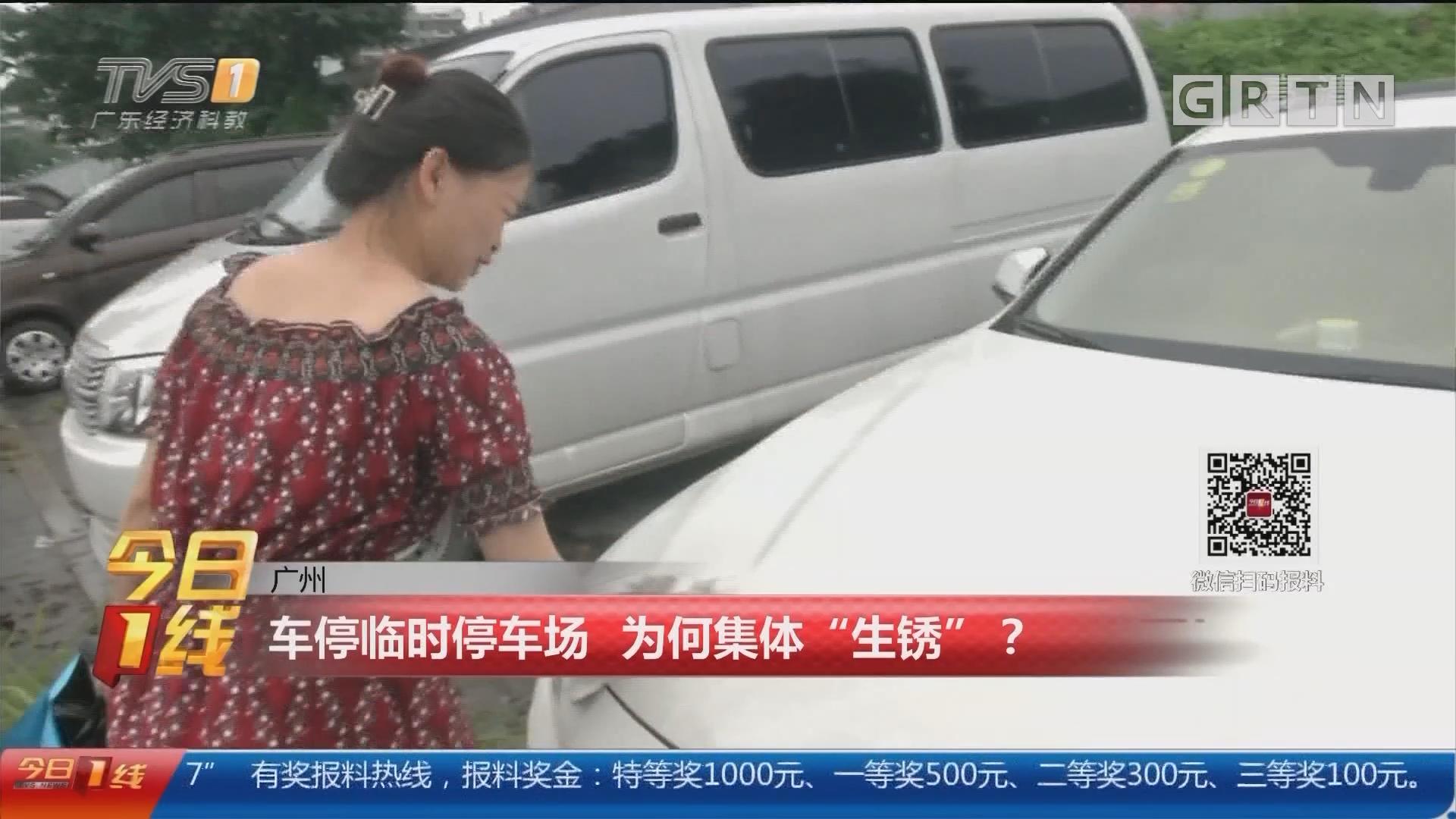 """广州:车停临时停车场 为何集体""""生锈""""?"""