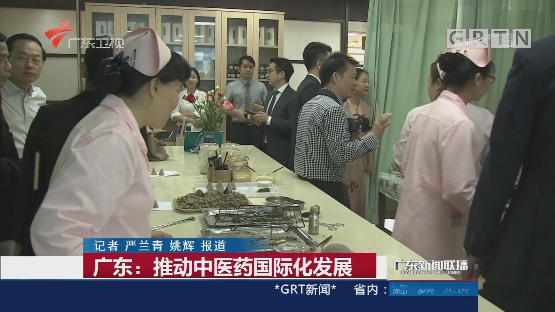 广东:推动中医药国际化发展