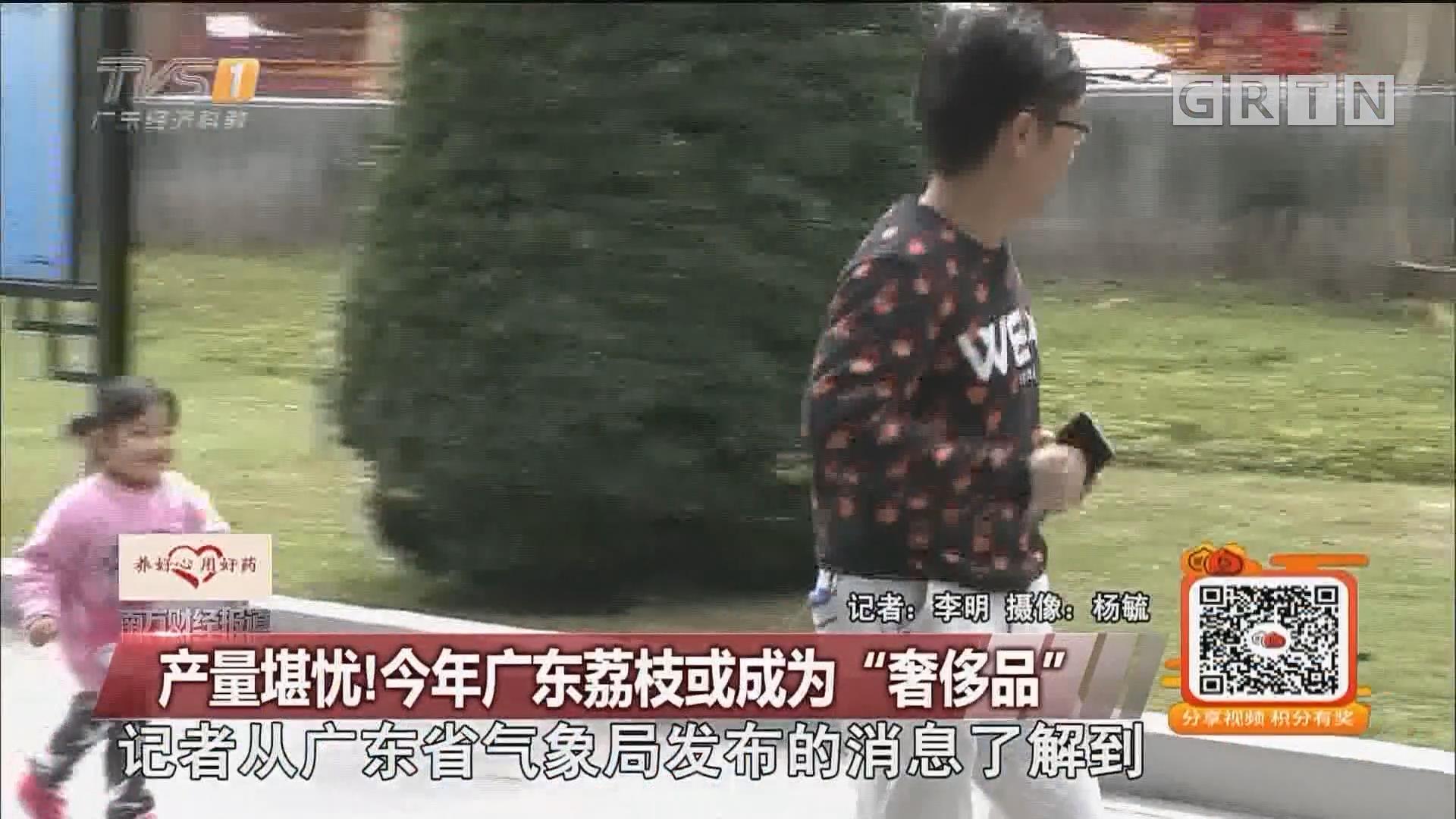 """产量堪忧!今年广东荔枝或成为""""奢侈品"""""""