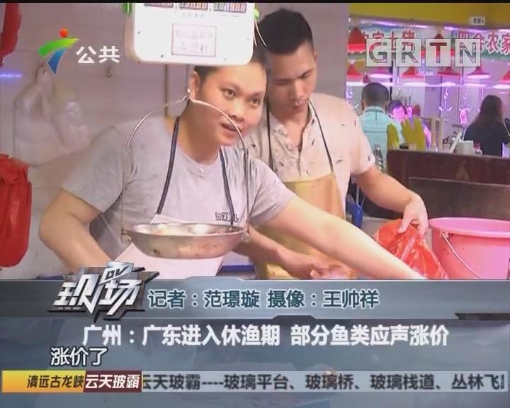 广州:广东进入休渔期 部分鱼类应声涨价