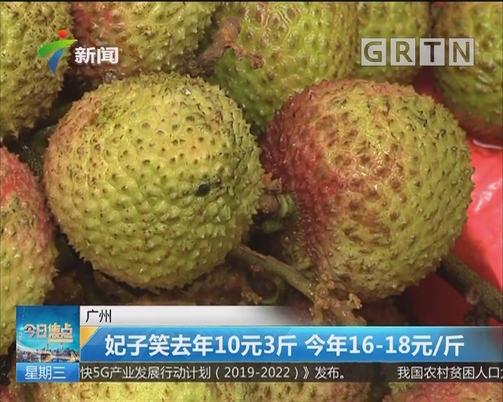 广州:妃子笑去年10元3斤 今年16-18元/斤