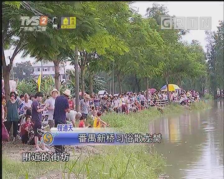 番禺新桥习俗散龙膥