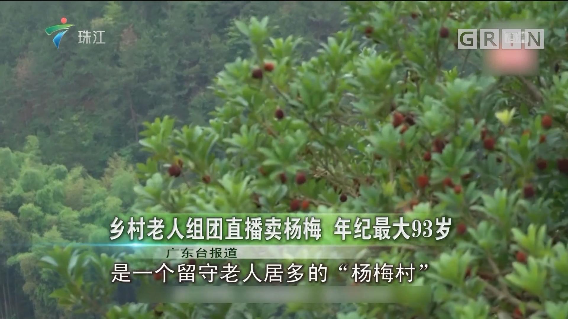 乡村老人组团直播卖杨梅 年纪最大93岁