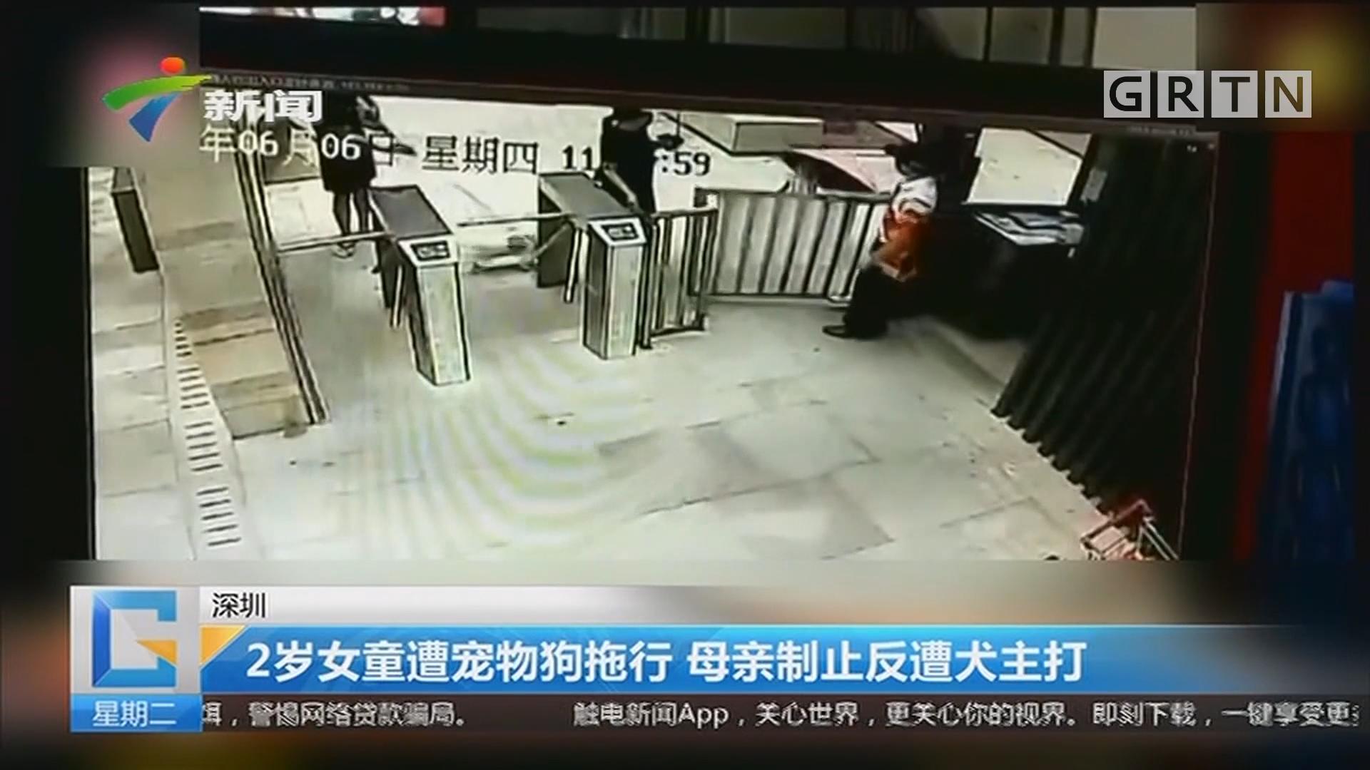 深圳:2岁女童遭宠物狗拖行 母亲制止反遭犬主打