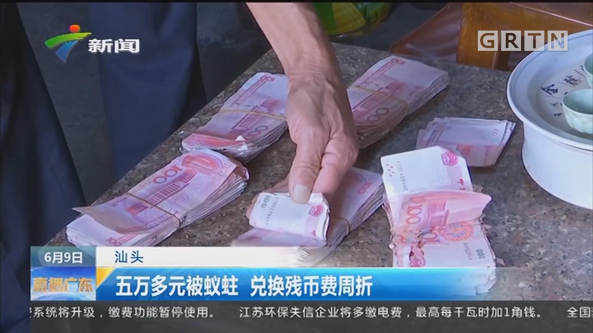 汕头:五万多元被蚁蛀 兑换残币费周折