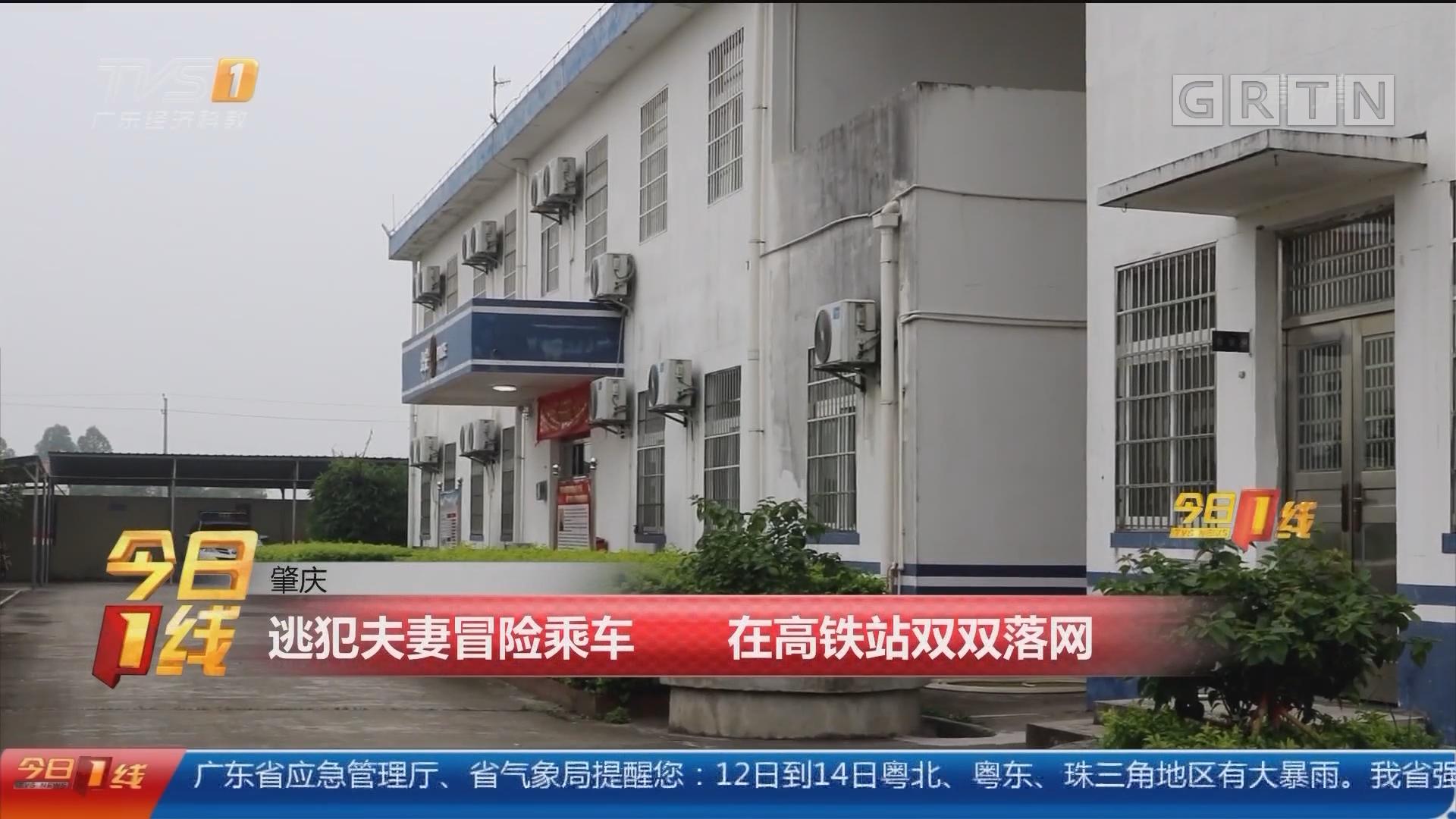 肇庆:逃犯夫妻冒险乘车 在高铁站双双落网