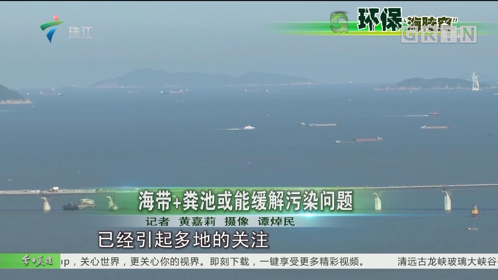海带+粪池或能缓解污染问题