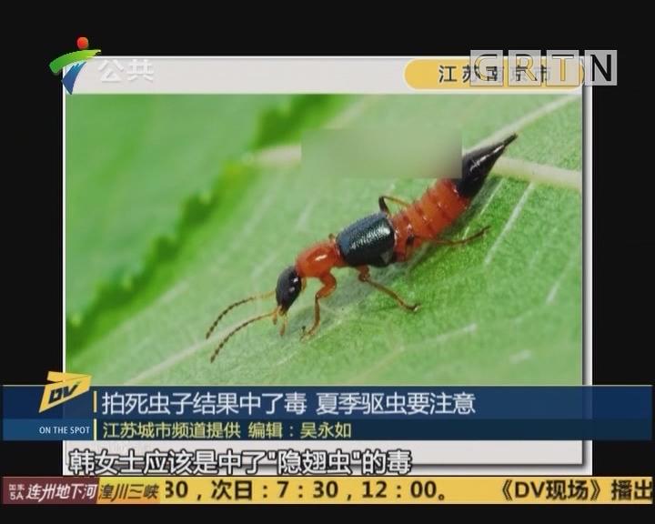 拍死虫子结果中了毒 夏季驱虫要注意
