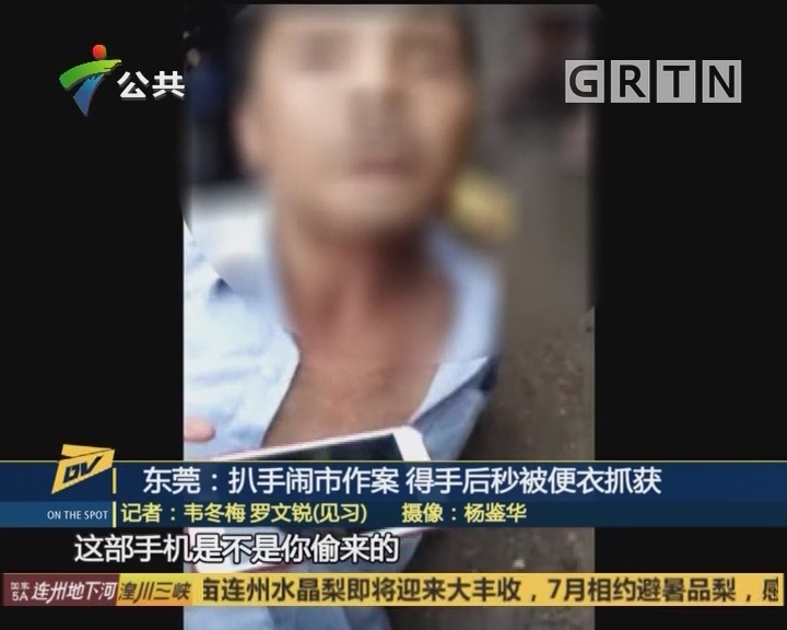 东莞:扒手闹市作案 得手后秒被便衣抓获