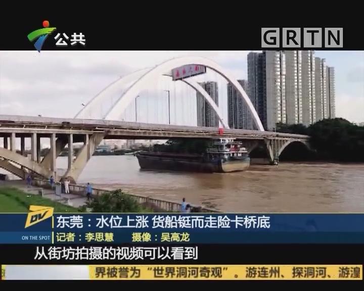 东莞:水位上涨 货船铤而走险卡桥底