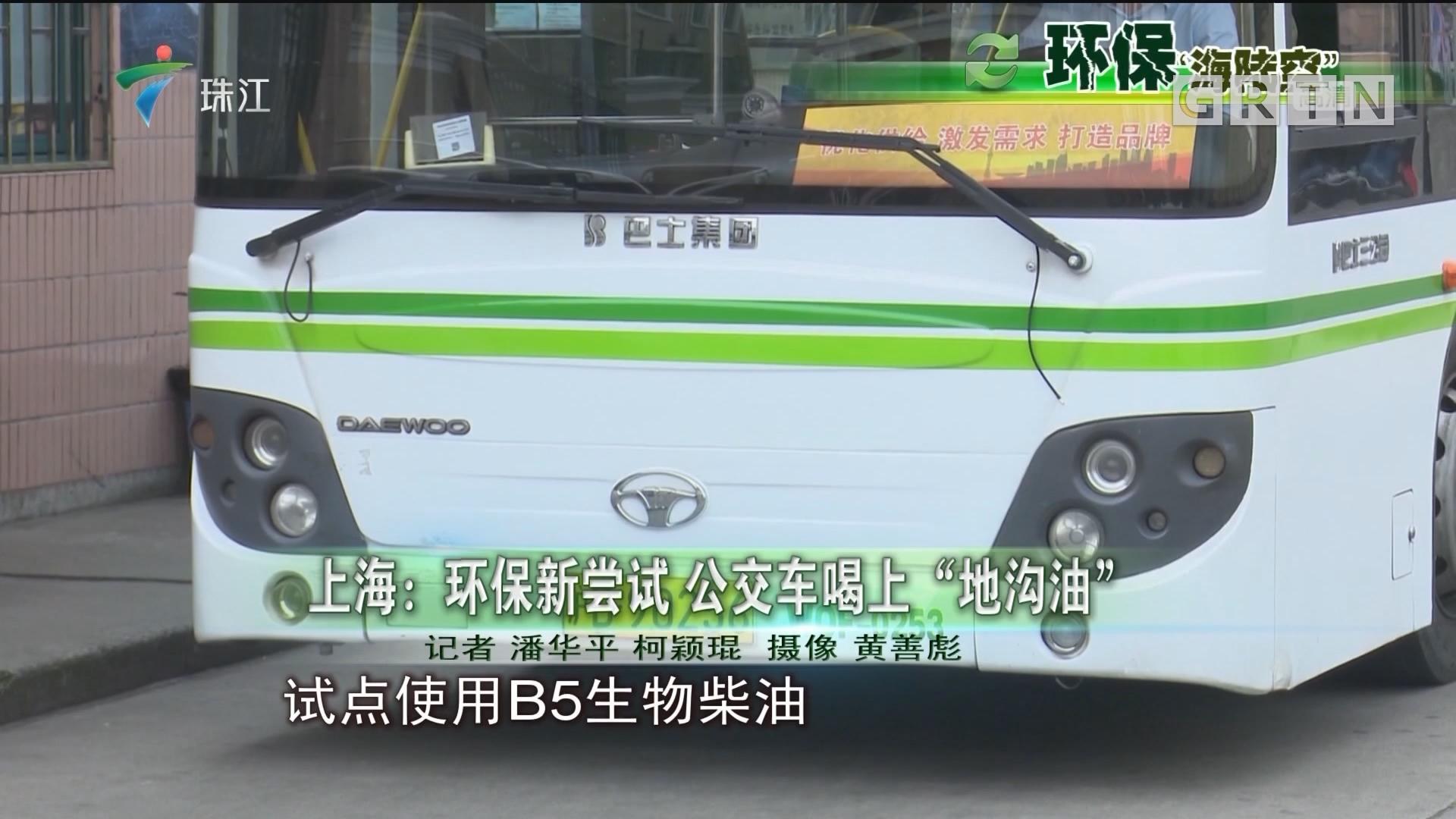 """上海:环保新尝试 公交车喝上""""地沟油"""""""