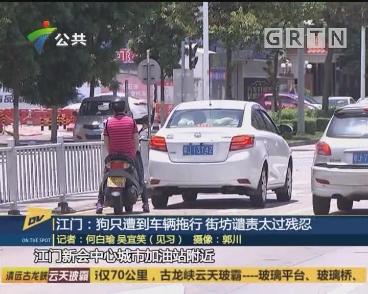 江门:狗只遭到车辆拖行 街坊谴责太过残忍