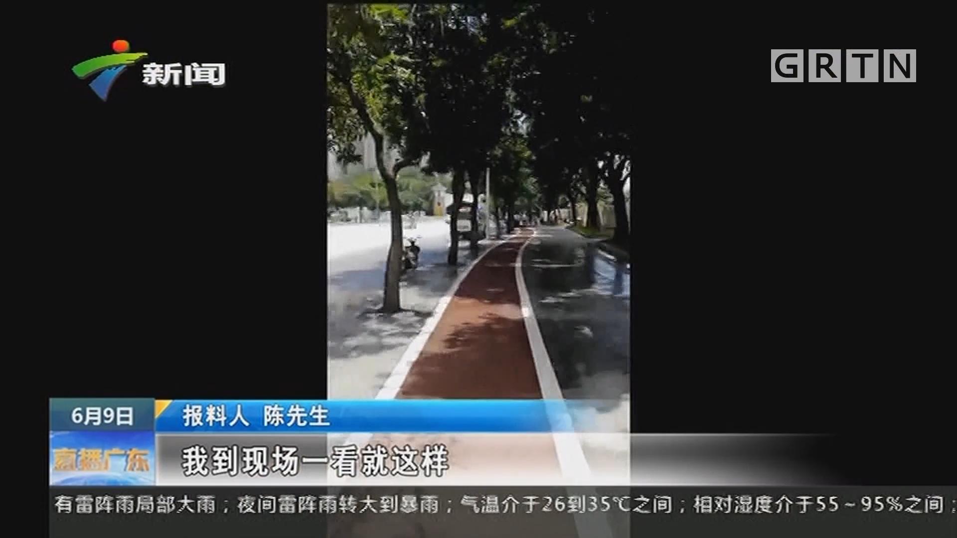 广州金沙洲:男子马路边爬树摘芒果 失足坠落死亡