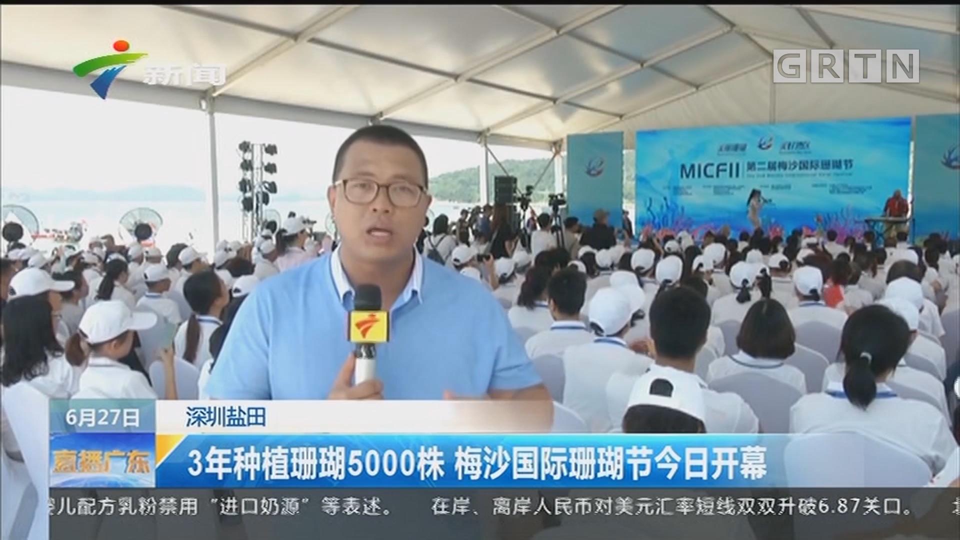 深圳盐田:3年种植珊瑚5000株 梅沙国际珊瑚节今日开幕