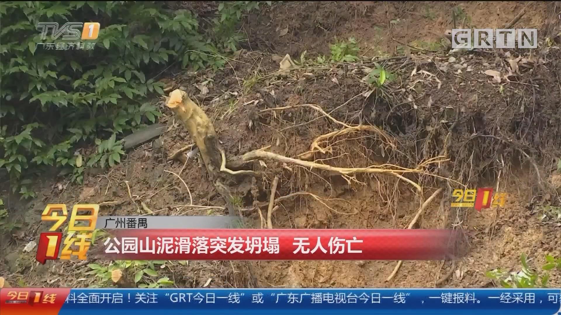 广州番禺:公园山泥滑落突发坍塌 无人伤亡