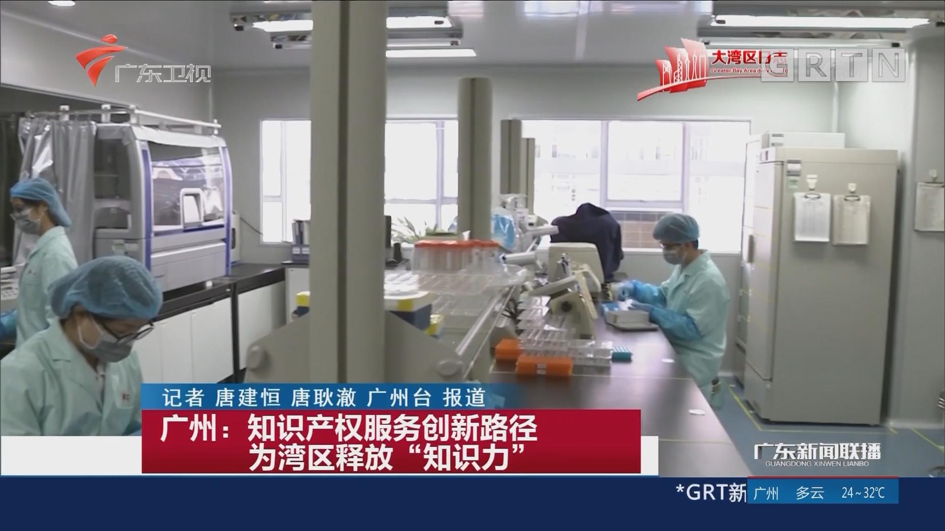 """广州:知识产权服务创新路径 为湾区释放""""知识力"""""""
