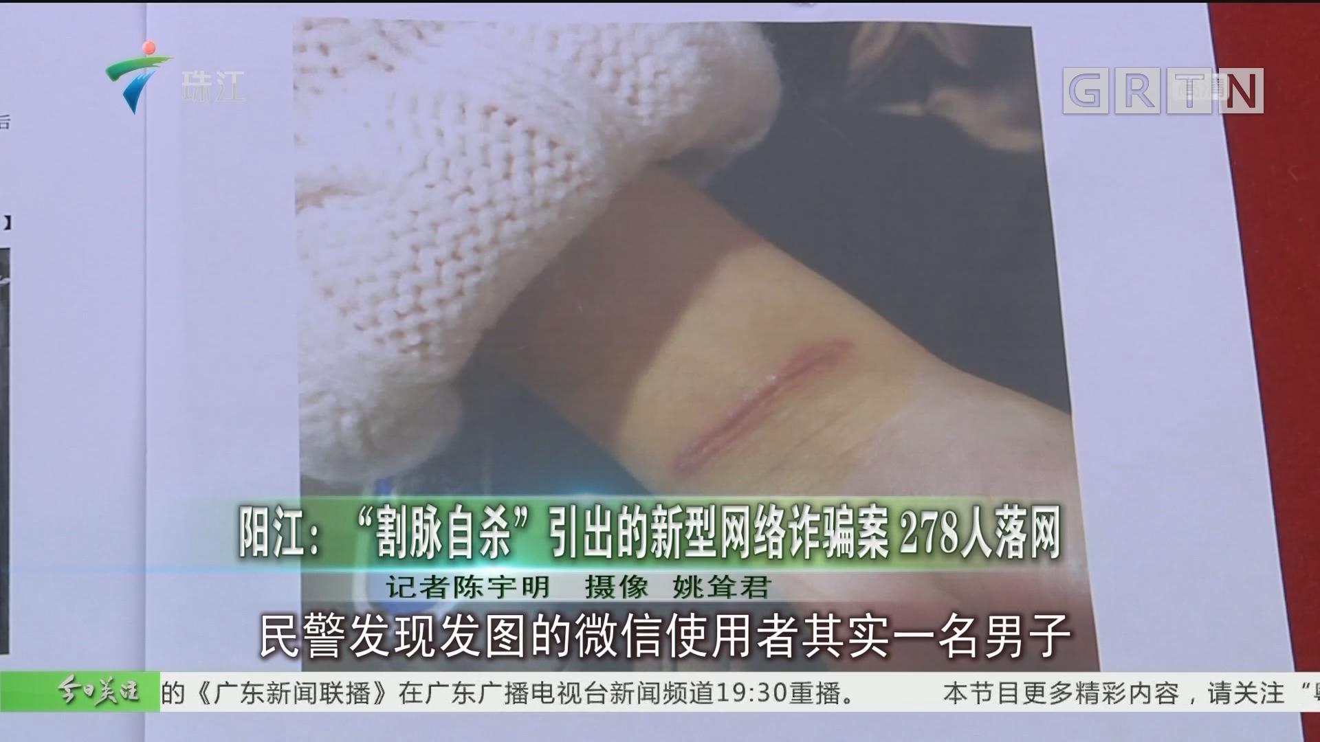"""阳江:""""割脉自杀""""引出的新型网络诈骗案 278人落网"""