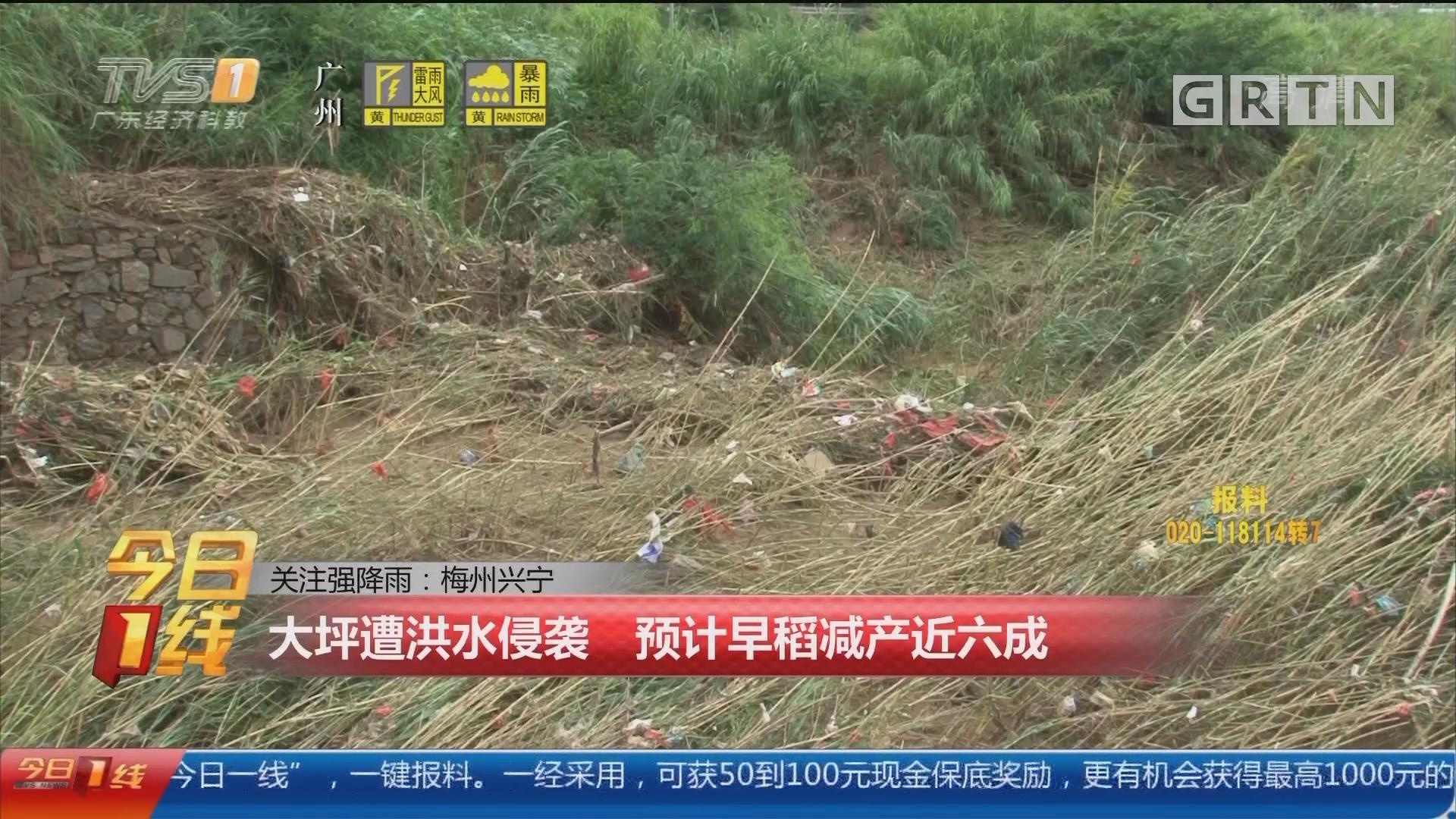 关注强降雨:梅州兴宁 大坪遭洪水侵袭 预计早稻减产近六成