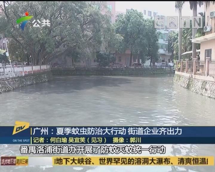 广州:夏季蚊虫防治大行动 街道企业齐出力