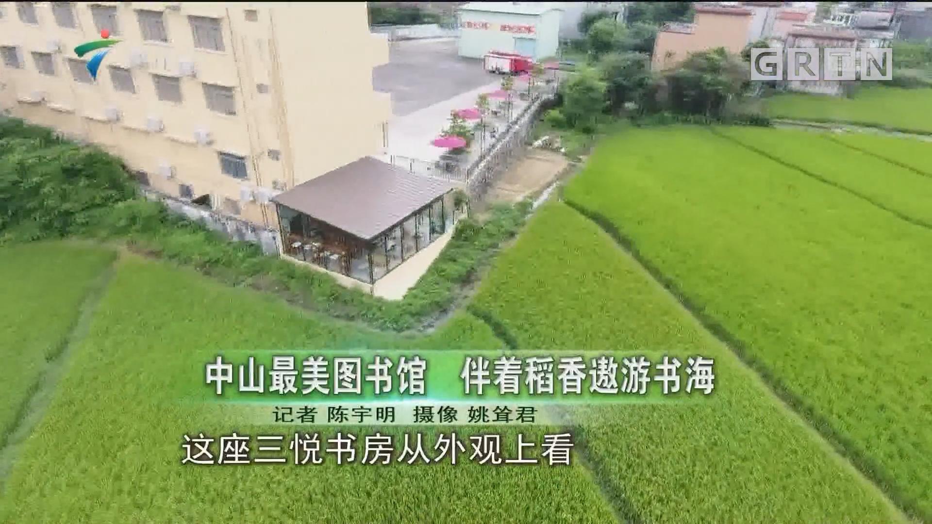 中山最美图书馆 伴着稻香遨游书海