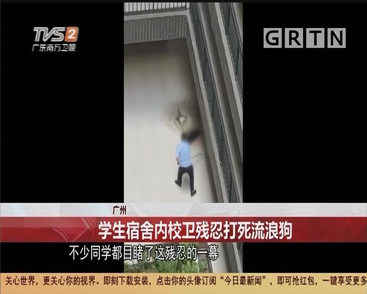 广州:学生宿舍内校卫残忍打死流浪狗