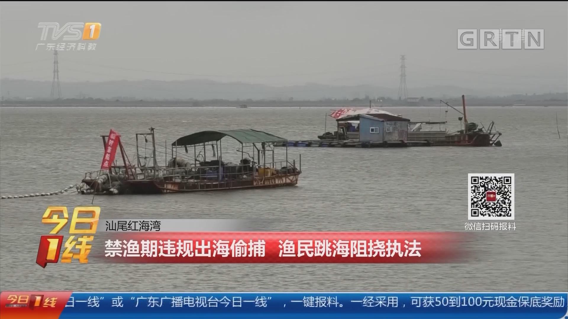 汕尾红海湾:禁渔期违规出海偷捕 渔民跳海阻挠执法